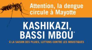 La dengue arrive